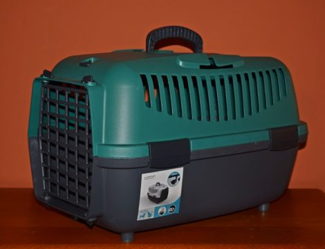 Petmax szállítóbox /sötétzöld