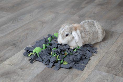 """TRIXIE  """"szimat szőnyeg"""" /Sniffing carpet"""